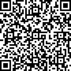 Pupil voice QR Code